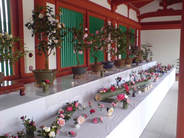 奈良 薬師寺①
